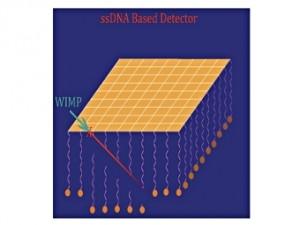 Схема работы ДНК-детектора темной материи. Изображение из статьи Drukier et al.