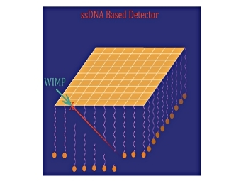 ДНК-детектор темной материи