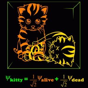 Коты, демоны и квантовая запутанность за горизонтом ЧД