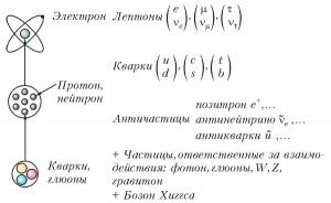 Элементарные частицы Стандартной модели микромира