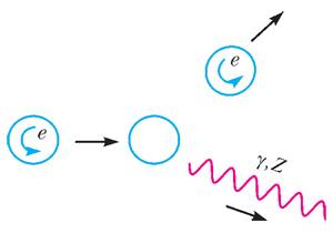 Неизменность проекции спина электрона при испускании фотона или Z-бозона