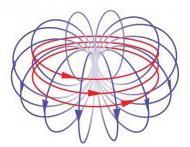 Поле магнитного анаполя