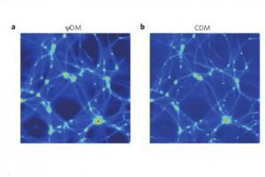 Результаты компьютерного моделирования (a) и наблюдений (b) Изображение: Nature