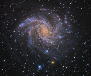 "Галактика NGC 6946 ""Фейерверк"""