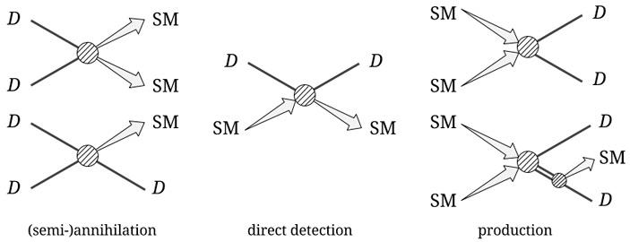 Рис. 1. Три типа процессов, чувствительных к взаимодействию гипотетических массивных частиц темной материи (D) с обычным веществом (SM): аннигиляция (слева), рассеяние (в центре), и рождение частиц темной материи на коллайдерах (справа)