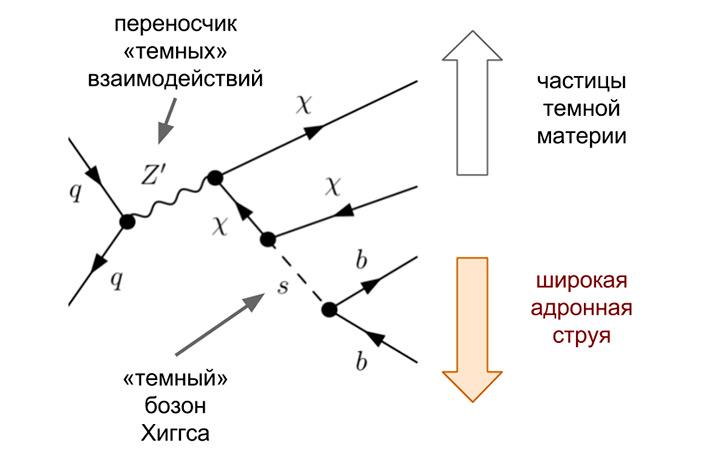 Рис. 2. Процесс рождения пары частиц темной материи, в ходе которого излучается легкий «темный» бозон Хиггса, который затем распадается на обычную пару b-кварков. Рисунок из статьи M. Duerr et al., 2017. Hunting the dark Higgs